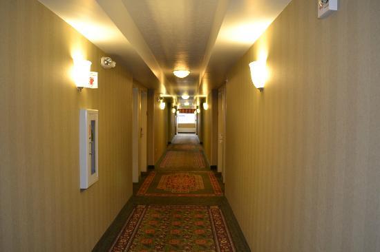 Holiday Inn Express Hotel & Suites Fairbanks: hallway