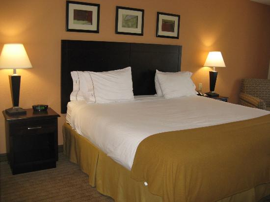 Holiday Inn Express Hotel & Suites Lafayette East: Lafayette HIE, King Bed
