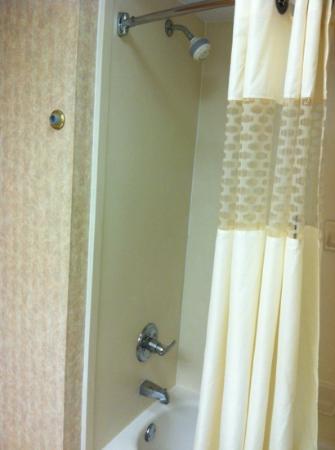Quality Inn hotel in Fremont: bathroom