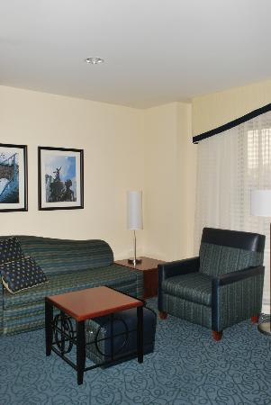 Residence Inn Cincinnati Downtown/The Phelps: Living