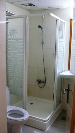 Savoy Park Hotel Apartments: Shower Room