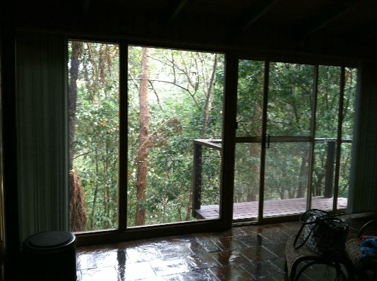 Kondalilla Eco Resort: View from bedroom