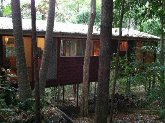 Flaxton, Australia: Treehouse 12, the Hideway