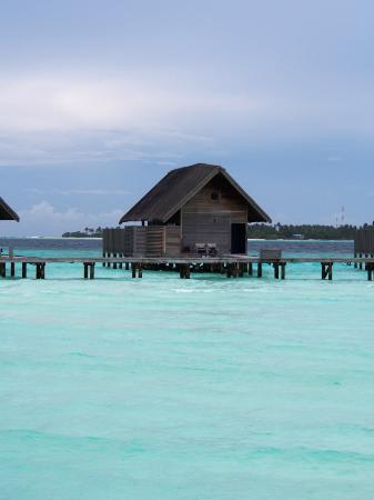 COMO Cocoa Island, The Maldives: Loft villa