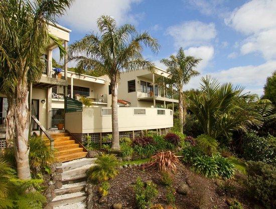Eden House: Sub tropical haven