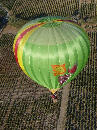 ‪Wine Country Balloons‬