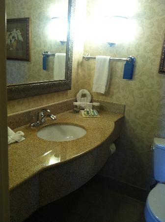 Hilton Garden Inn Indianapolis Downtown: Vanity in bathroom
