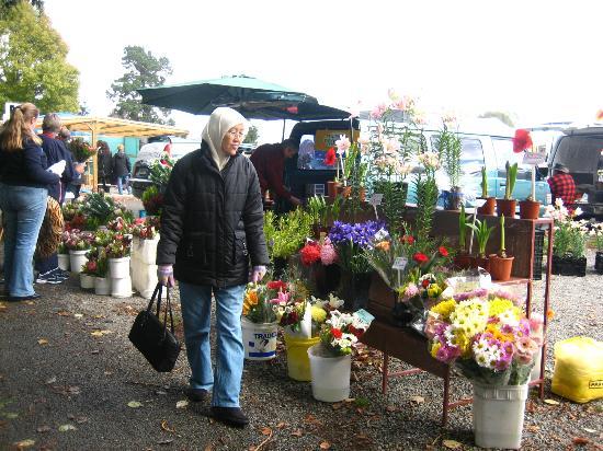 Riccarton Rotary Sunday Market : Fresh flowers, vege and fruits