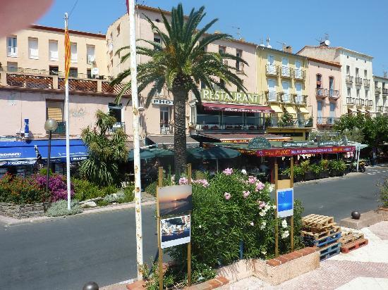 Bar en croute photo de chez pujol port vendres tripadvisor - Restaurant le france port vendres ...