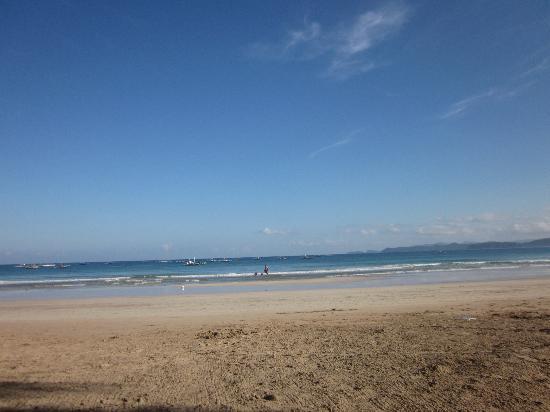 Sheridan Beach Resort and Spa: Beach