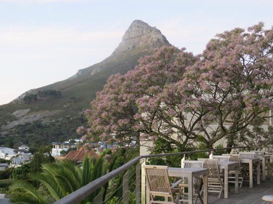 Boutique @ 10: Looking towards Lion's Head from the pool deck .....
