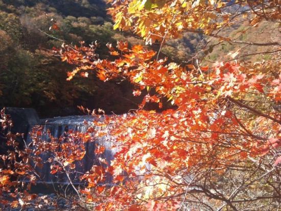Nishizawa Canyon: 西沢渓谷