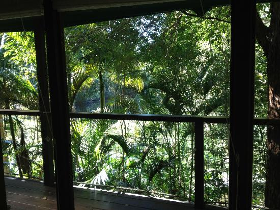 Amazing Wollumbin Palms Retreat at Mt Warning: Stunning Views