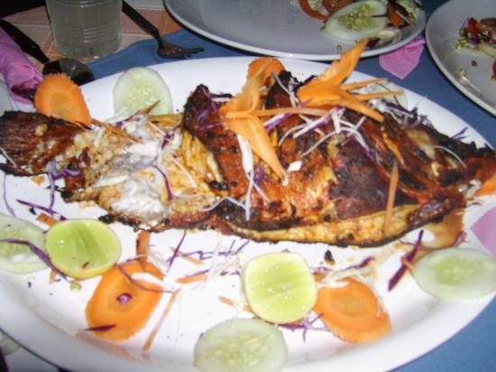Sunshine Cafe/Sea Food Restaurant: red snapper