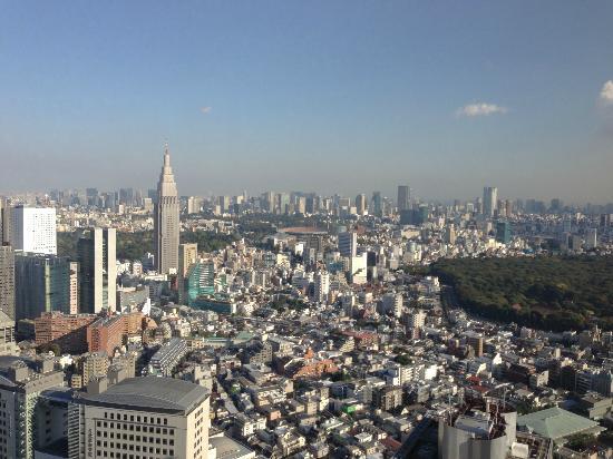 Park Hyatt Tokyo: スカイツリーと東京タワー両方見える