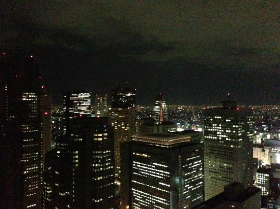 Park Hyatt Tokyo: 47階ジムからの眺め