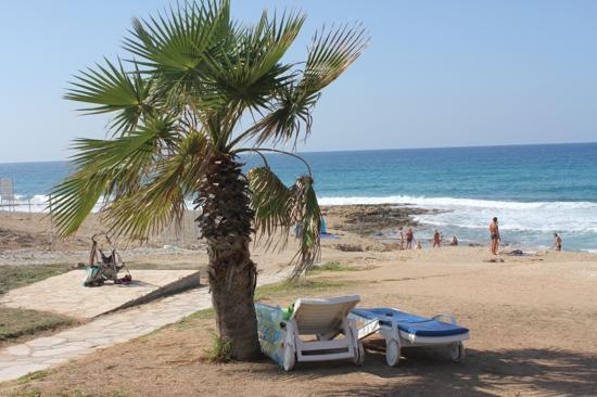 Venus Beach Hotel: beach access