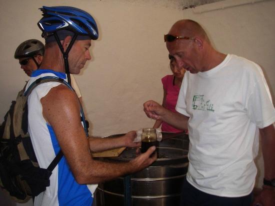 Outdoor-Tours.com: Downhill Cycling Nature Trip + honey tasting
