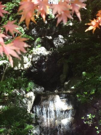 Former Fukukawa Gardens - Kita - Lohnt es sich?