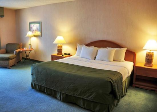 Yakima Valley Hotel and Conference Center: King Bed