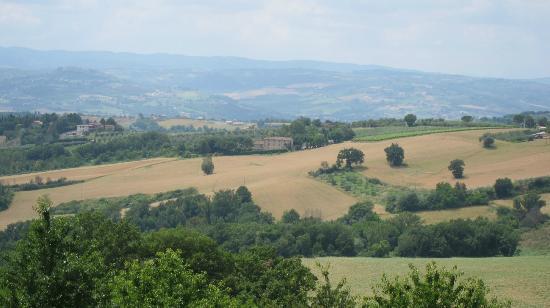 Agriturismo Casale dei Frontini: Landscape - Casale dei Frontini