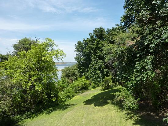Chobe Game Lodge : il fiume oltre la vegetazione