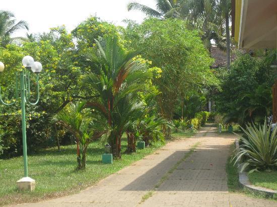 Lakshmi Hotel & Resorts: Bungalowanlage