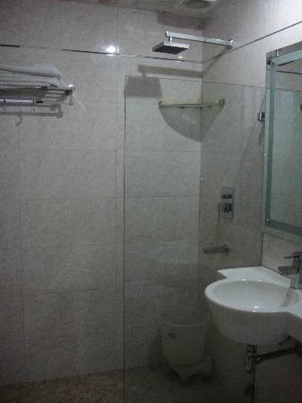 Hotel Vedas Heritage: salle de bain