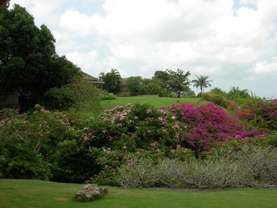 AYANA Resort and Spa: beautiful gardens with view over towards cliff villa's!