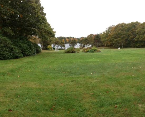 Stonehouse Manor at Popham Beach B&B: View to the lake which is much bigger but is blocked by the trees