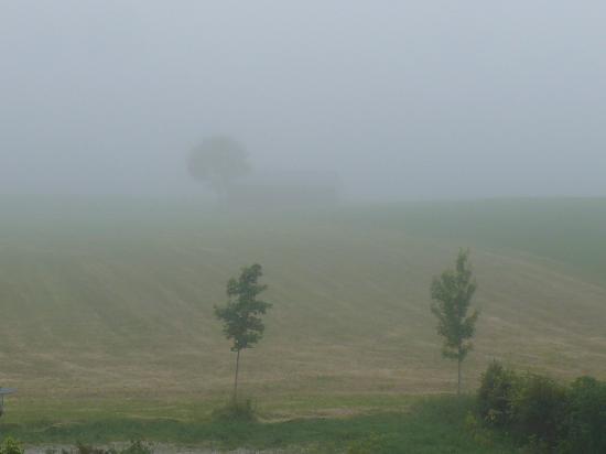 Hotel Nummerhof: Утренний туман