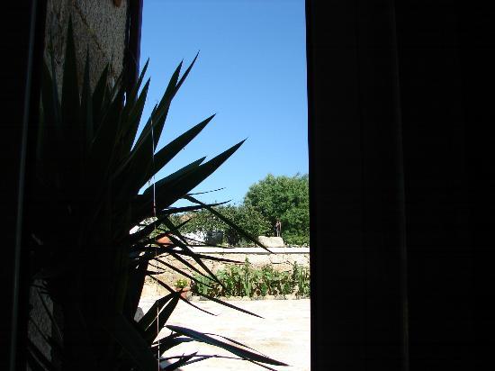 Carya Tallaya - Casas de Campo: vista do apartamento