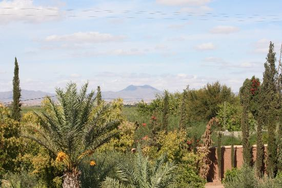Casa Taos: View from dining room terrace
