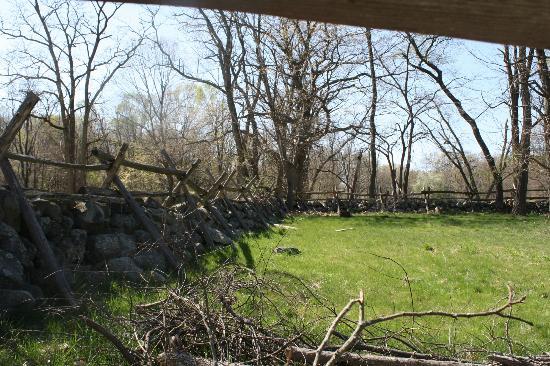 Battle Road Trail: view thru fence