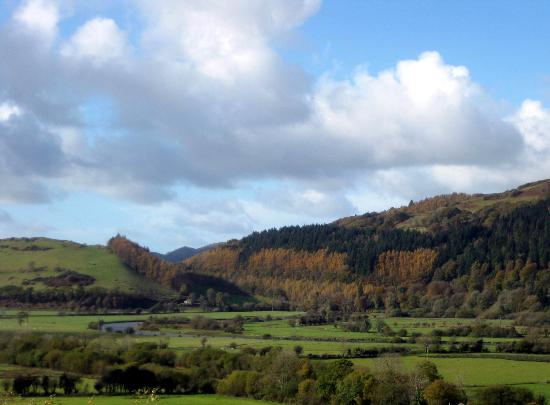 Dyfiview B&B : Autumn View
