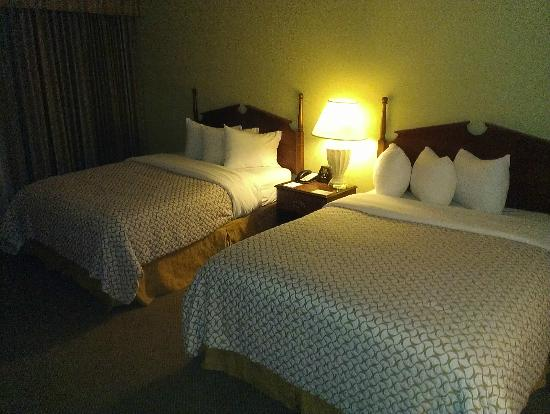 Embassy Suites by Hilton Tampa - Airport/Westshore: bedroom