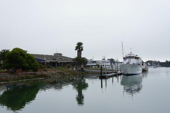 DoubleTree by Hilton Berkeley Marina: la marina sous la burme