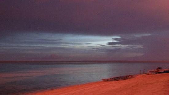 Malapascua Exotic Diving Center: @ Malapascua Exotic's beachfront