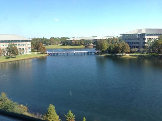 Hotel Indigo Jacksonville Deerwood Park: Calming view from my room.