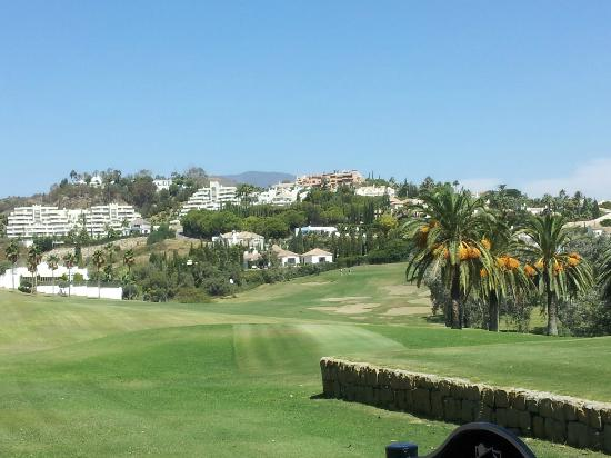 Los Naranjos Golf Club: Gold course view
