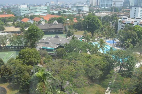Hotel Borobudur Jakarta: Pool and Garden view