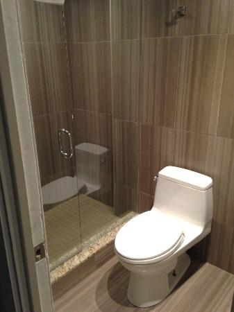 Ramada Plaza Toronto Downtown: separate shower and commode