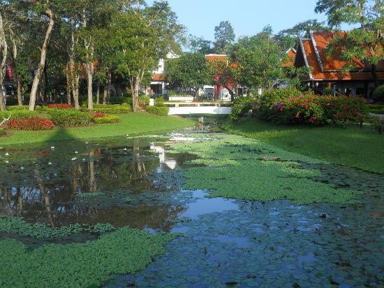 Suan Bua Hotel & Resort: Au milieu d'un parc