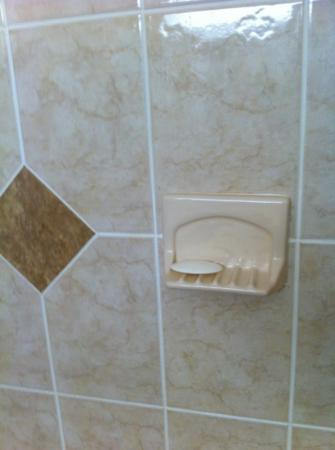 Econo Lodge : dirty soap in shower at arrival