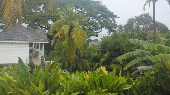 Rendezvous Resort: View from Verandah room, rainy day