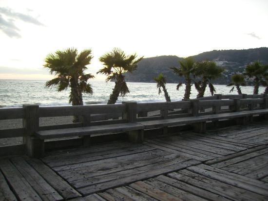 Pension La Herradura: Beach
