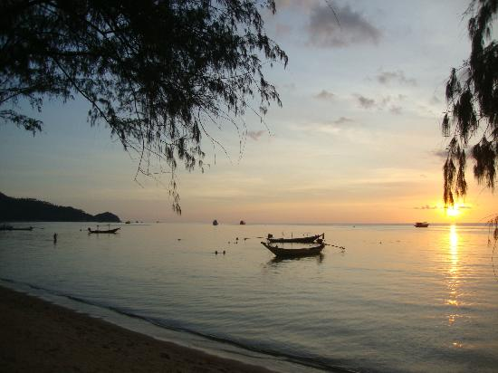 Sairee Cottage Resort: Sairee beach evening