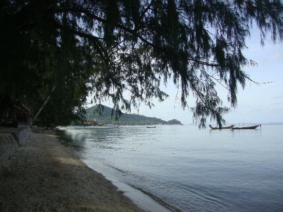Sairee Cottage Resort: Sairee beach looking east