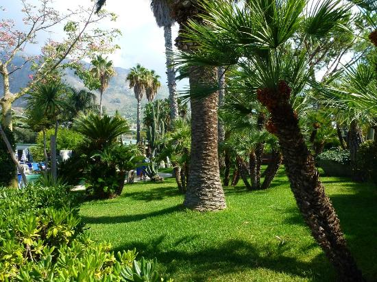 Park Hotel Terme Mediterraneo: Hotelparkanlage