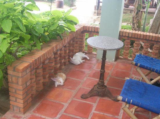 Mui Ne Paradise Beach Resort: Front porch